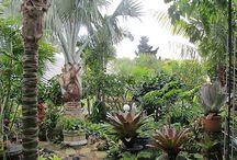 Gardens to dream of