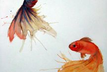 Goldfish / Goldfish are beautiful creature, so relaxing and pacifying