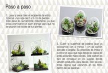jardineria en macetas ❤