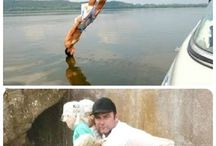 Perfect Timed photos❤️