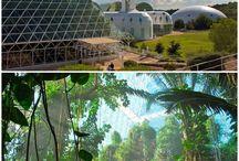 Biosphere market