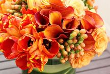 Flowers / Flower arrangements