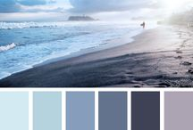 Popular Paint Swatches