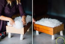 Pet DIYs and helps