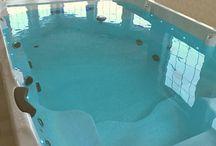 Coast Spas Swim Spas