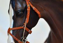 Horse, accessori e creazioni