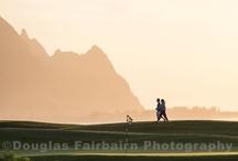 Golf Course Photography / by Douglas Fairbairn Photography
