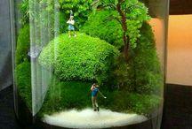 Garden - terrariums, bonsai and kokedama