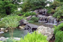 Ogród wodny / Strumień