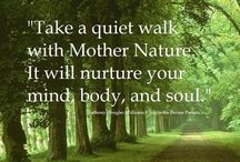 A Quiet Walk With Nature