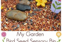 sensory bins / by Carla Jewell