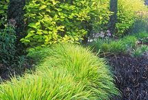 Hage/lysthus / Opparbeidelse av stående hage