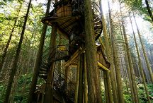 Tree House For The Dreamer In Me / Loving tree houses and the freedom they represent to me.
