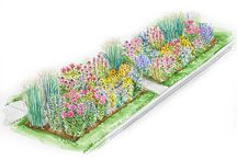 front flower bed planing