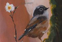 Little Birds...Love Birds / paintings and sketches of little birds