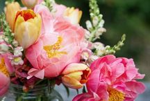Blumen * Flowers