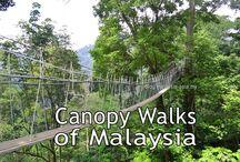 Malaysia Adventures