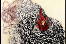 Høns / Hønse billeder