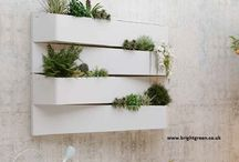 Green Wall Ascent / New Multi Purpose Product for Walls (Interior or Exterior) or as area dividers.  Can be planted with Live or High Quality Artificial Planting