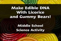 Teaching Genetics