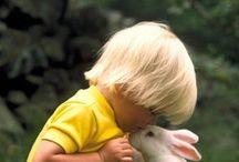 cute doggies | humaninhos | 犬 (イヌ) / Pets