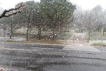 Neige février 2015 / Une belle chute de neige sur Réals !