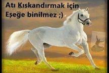 At candır