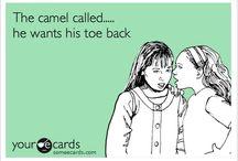 OMG Funny / by Tricia Diemert