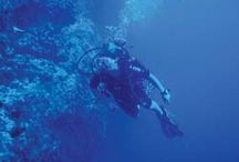 Under the Sea / Diving and Snorkelling in Quirimbas Archipelago in Northern Mozambique