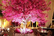 Árvores francesas