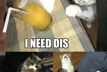 Lol funny :)