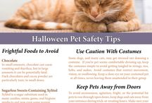 Halloween Pet Safety and Fun / Halloween is a great time to spend time with family and friends.  Include your furry friends in the festivities with our fun and safe suggestions.
