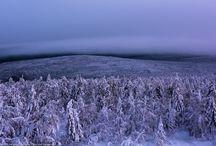 Photo. Landscapes