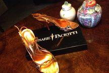 Gucci Paciotti Trussardi / Purple Red Orange Flowers Bags & Shoes