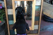 Black Dog Salvage / Upcycling is a way of life for Black Dog Salvage now partnered with Woodcraft. See how you can make wood work with these projects. / by Woodcraft
