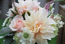 Flower & Plant Decor / Beautiful flower and plant arrangements