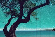 fotografii minunate peisaje
