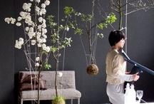 FLOREDESIGN: florystyka