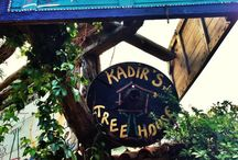 Hotel / Casa sull'albero