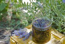 garden / by violet d
