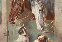 pes a kůň