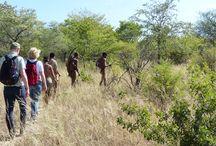 Zu Besuch bei den Buschmännern in Namibia / Bei unserer Reise in den Caprivistreifen im Nordosten Namibias haben unsere Gäste Gelegenheit, einen kompletten Tag bei den Buschmännern zu verbringen - ein Erlebnis, das einen nicht mehr los lässt