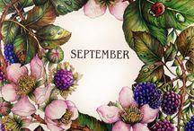 mês a mês