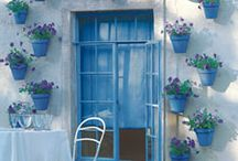 Flower Pots and Windowboxes
