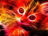 fractat animals