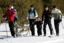 cross country ski action!