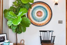 How to decorate with large indoor plants