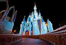Amusements Parks & Theme Parks / #amusementParks #funparks #themeparks