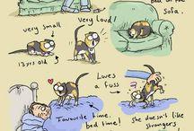 Simons cat oder ähnlich geiles