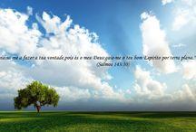 """Minha Fé ! / """"Permanecerdes fundados e firmes na fé,e não vos moverdes da esperança do Evangelho que tendes ouvido.(...)"""" Colossenses 1:23"""